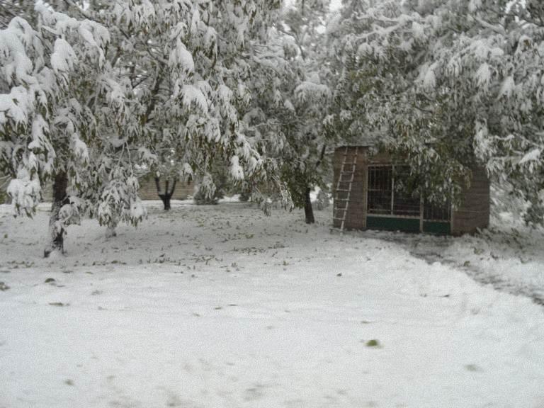 کلبه برفی